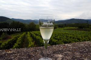 apie_vyna